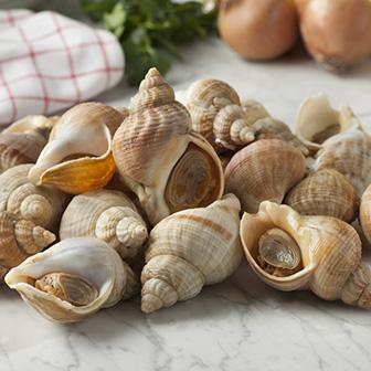 L039Océan Et Ses Saveurs Poissonnier Shutterstock 402141373